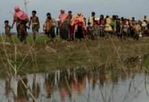 Who Are These Rohingyas