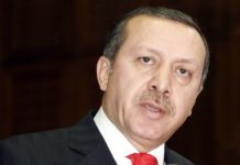 Why is Turkey the Perfect Model for Muslim Countries to Follow