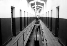 Why Dutch has least Crimes and Closing Prisons
