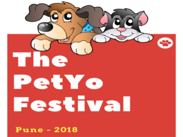 Petyo – A grand party for our loyal friends