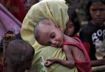 Future of Rohingyas Prostitutes, Terrorism, Unplanned Population Influx, Rape Pregnancies