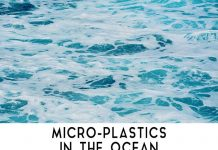 Microplastics: New Killer Agent of Earth