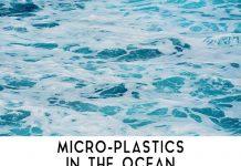 Microplastics: New Killer Agent of Earth