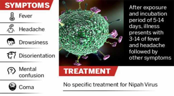 All you need to know about this deadly Nipah Virus