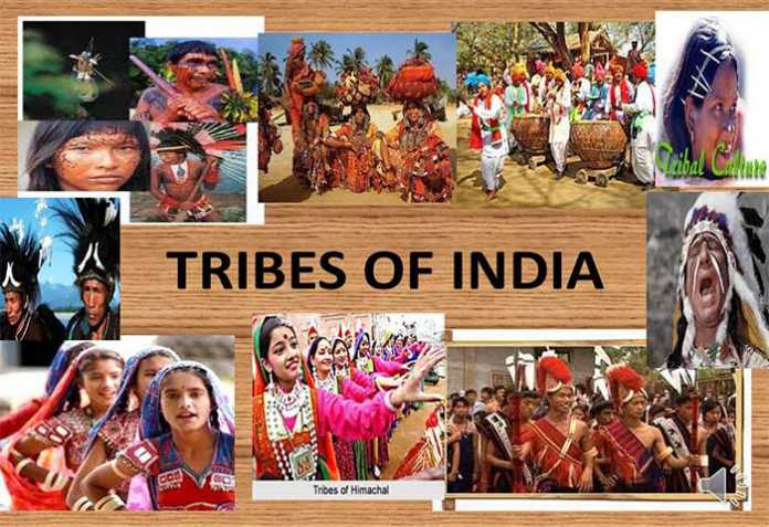 Tribal- Marginalized Community of the Modern Society