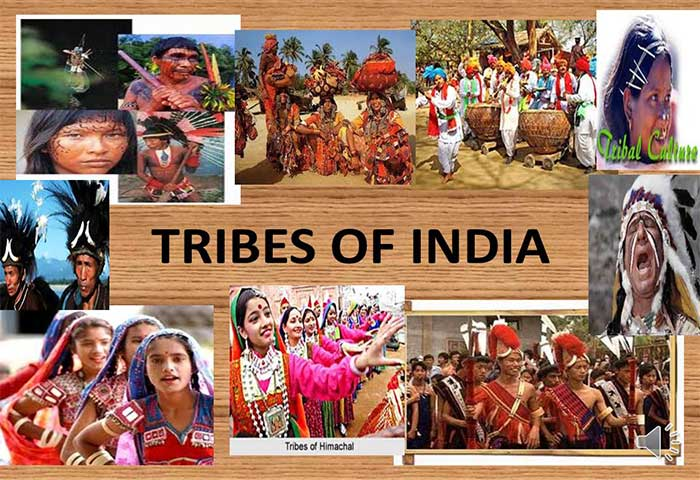 b90469b5a9 Tribal: Marginalized Community of the Modern Society ...
