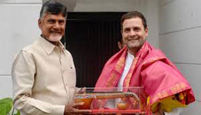 Chandrababu Naidu meets Rahul, pledges to defend democracy