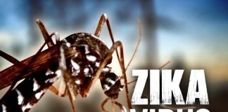 Zika reaches MP, Health Ministry sends team to prevent outbreak