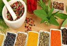 Wellness drive taking Ayurveda to the International level: Study