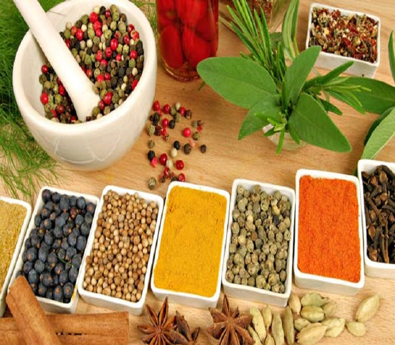 Wellness drive taking Ayurveda to the International level: Study