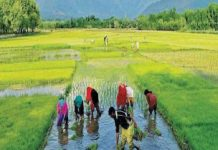 Farmer's issues to dominate upcoming Lok Sabha elections
