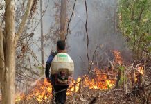 Security Personnel help battle Forest fire in Indonesia