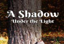 "Review of a novel ""A Shadow Under the Light"""