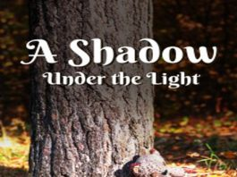 """Review of a novel """"A Shadow Under the Light"""""""