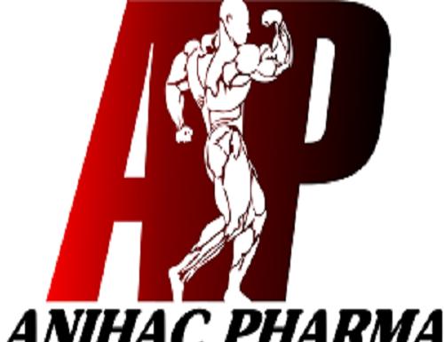 Anihac Pharma brings the biggest platform for Mister Model Worldwide 2019