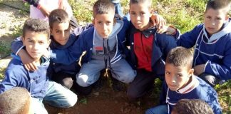 Let's make it green on January 20th High Atlas Foundation will Plant Thousands of Trees