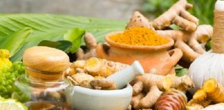 US, India set for Clinical trial of Ayurvedic medicine against Covid-19. the policy times
