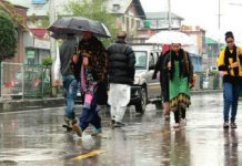 Web shutdowns, pandemic have cost Kashmir Rs 40, 000 cr, 5 lakh occupations. The policy times